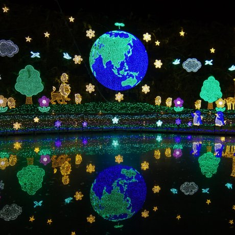Ashikaga Flower Park Illumination