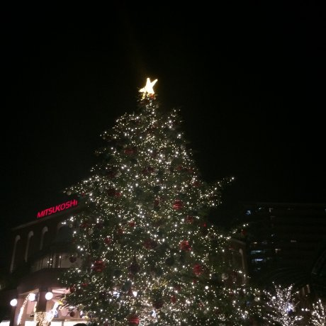 Yebisu Christmas Illumination