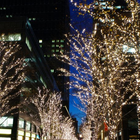 A Million LED Lights in Marunouchi